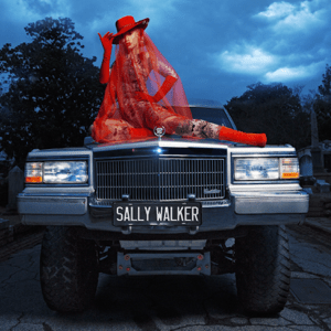 Sally Walker - Sally Walker mp3 download
