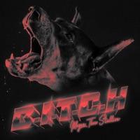 B.I.T.C.H. - Single - Megan Thee Stallion mp3 download