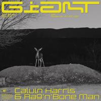 Giant Calvin Harris, Rag'n'Bone Man