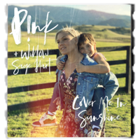 P!nk & Willow Sage Hart - Cover Me In Sunshine Mp3