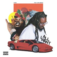 All I Want (feat. Flipp Dinero) - Single - T-Pain mp3 download