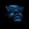 Swedish House Mafia & The Weeknd - Moth To A Flame artwork