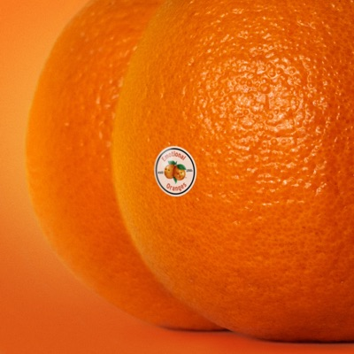 Your Best Friend Is A Hater - Emotional Oranges mp3 download