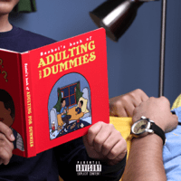 Download lagu Basboi - Adulting For Dummies