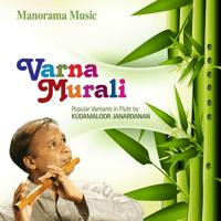 Navaragamalika - Adi Kudamaloor Janardanan, Balakrishna Kammath & Hari Krishnamoorthy