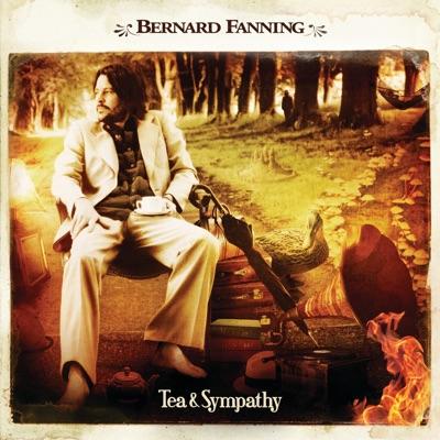 Wish You Well - Bernard Fanning mp3 download