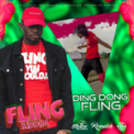 Free Download Ding Dong Fling (Yuh Shoulda) Mp3