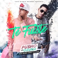 Te Fuiste (feat. Ozuna) - Single - Pusho mp3 download