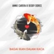 download lagu Anie Carera & Deddy Dores Badai Berlalu