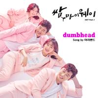 Dumbhead Arie Band