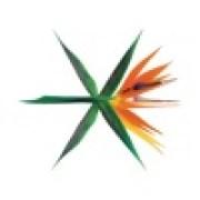 download lagu EXO Ko Ko Bop