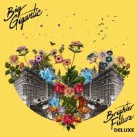 Brighter Future (Deluxe Version) - Big Gigantic mp3 download