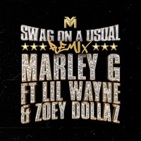Swag on a Usual (Remix) [feat. Zoey Dollaz & Lil Wayne] - Single - Marley G mp3 download