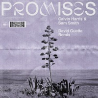 Promises (David Guetta Extended Remix) - Single - Calvin Harris, Sam Smith mp3 download
