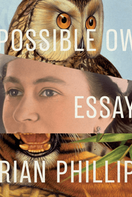 Impossible Owls: Essays - Brian Phillips