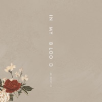 In My Blood (Acoustic) - Single - Shawn Mendes