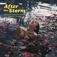 After The Storm (feat. Tyler, The Creator & Bootsy Collins) - Single - Kali Uchis mp3 download