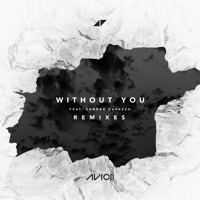 Without You (feat. Sandro Cavazza) [Remixes] - EP - Avicii mp3 download