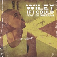 If I Could (feat. Ed Sheeran) - Single - Wiley mp3 download