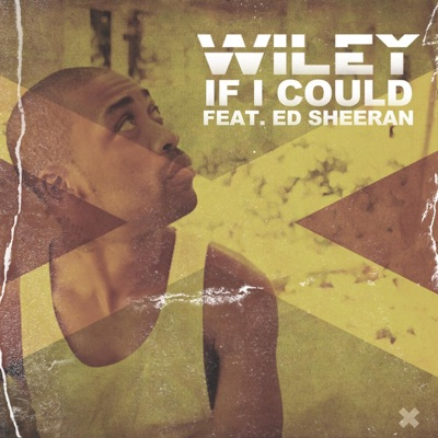 -If I Could (feat. Ed Sheeran) - Single - Wiley mp3 download