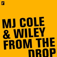 From the Drop - EP - MJ Cole & Wiley mp3 download