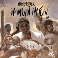 If I'm Lyin, I'm Flyin - Single - Kodak Black mp3 download