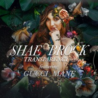 Transparency (feat. Gucci Mane) - Single - Shae Brock mp3 download
