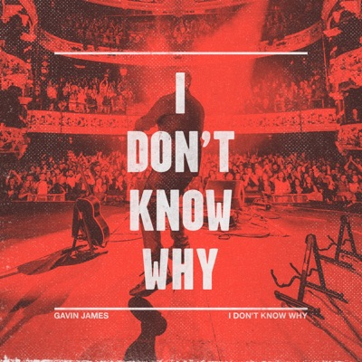 I Don't Know Why (Danny Avila Remix) - Gavin James mp3 download