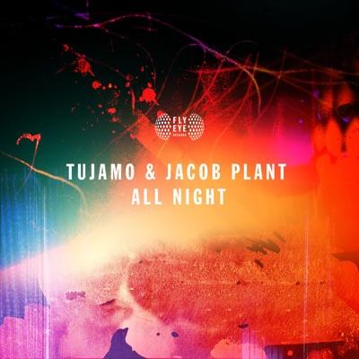 All Night - Tujamo & Jacob Plant mp3 download