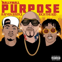 Purpose (feat. Rich the Kid & Rayven Justice) - Single - Mally Mall mp3 download