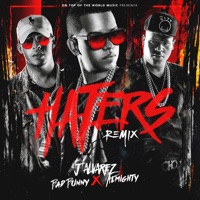 Haters (Remix) [feat. Bad Bunny & Almighty] - Single - J Alvarez mp3 download