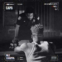 Capo - Single - NLE Choppa mp3 download