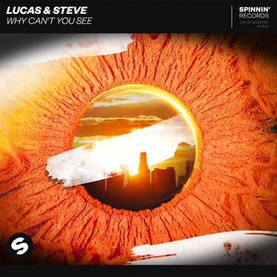 Why Can't You See - Lucas & Steve mp3 download