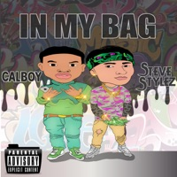 In My Bag (feat. Calboy) - Single - Steve Stylez mp3 download