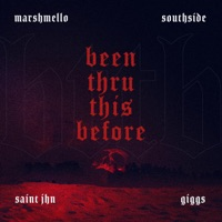 Been Thru This Before (feat. Giggs, SAINt JHN) - Single - Marshmello & Southside mp3 download