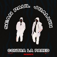 Contra La Pared (Remixes) - Sean Paul & J Balvin mp3 download