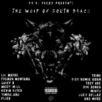 The Wolf of South Beach - DJ E-Feezy mp3 download