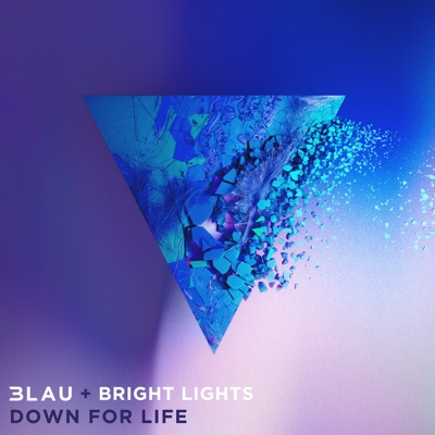 Down For Life - 3LAU & Bright Lights mp3 download