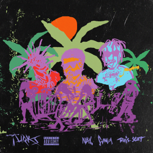 Turks (feat. Travis Scott) - Turks (feat. Travis Scott) mp3 download