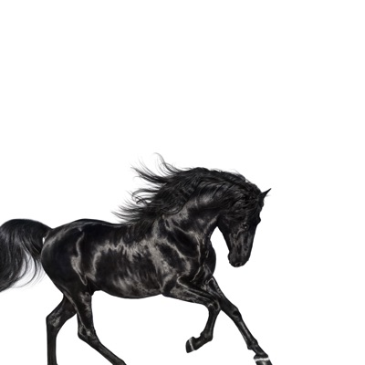 Old Town Road-Old Town Road - Single - Lil Nas X mp3 download