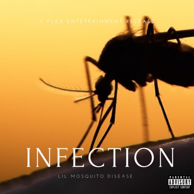 Intro - Lil Mosquito Disease mp3 download