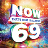 Various Artists - NOW That's What I Call Music, Vol. 69  artwork