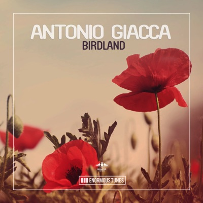 Birdland - Antonio Giacca mp3 download