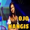 Download Lagu Ojo Nangis (feat. Lala Atila) MP3