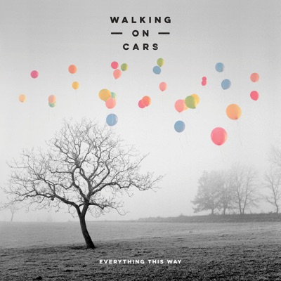 Flying High Falling Low - Walking On Cars mp3 download