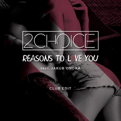 Reasons To Love You - 2Choice Feat. Jakub Ondra mp3 download