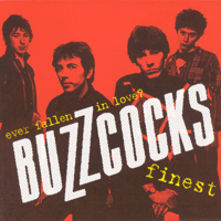 Ever Fallen in Love (with Someone You Shouldn't've)? Buzzcocks MP3