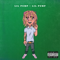 Lil Pump - Single - Lil Pump mp3 download