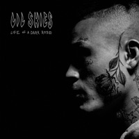 Welcome to the Rodeo - Single - Lil Skies mp3 download