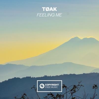 Feeling Me - TØAK mp3 download